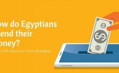 How do Egyptians Spend their Money?