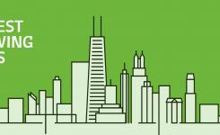 How fast do big cities grow?
